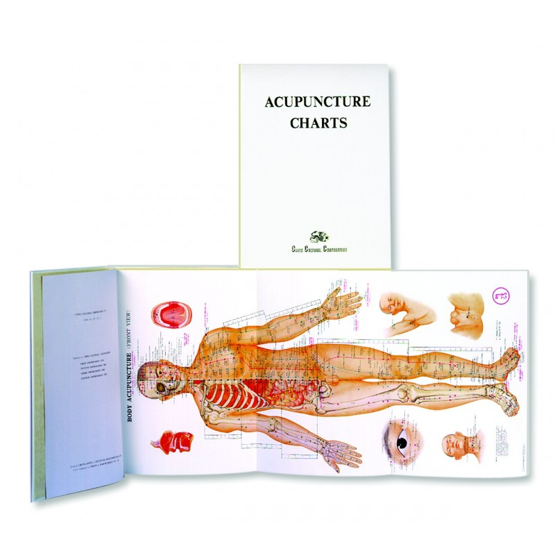 Acupuncture Book Charts BC-102