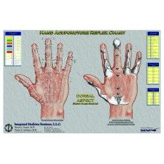 Hand Therapy Charts BC-112