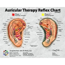 Auricular Therapy Reflex Desk Reference Cards BC-113