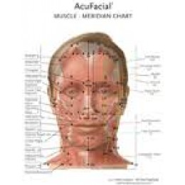 AcuFacial Meridian-Muscle Chart BC-104
