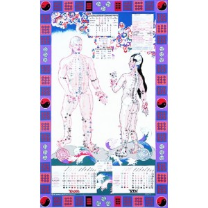 Illustrated Acupuncture Chart BC-109